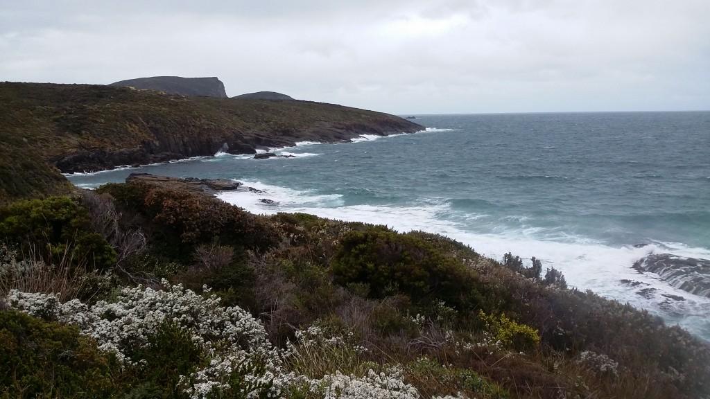 Looking towards Penguin Rocks