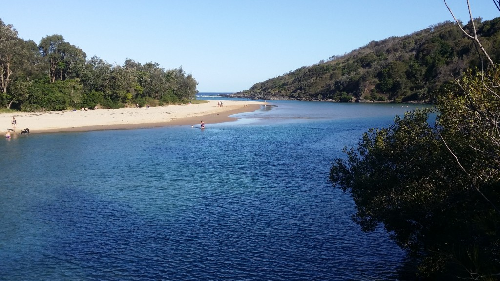 Boambee Creek - very popular albeit not hard to see why